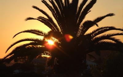 Palma de Mallorca 3